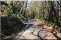 SX2785 : Woodland Road by Tony Atkin