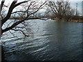 TL5370 : River Cam at Upware by Stuart Warrington