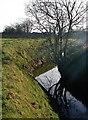 TA2331 : Southfield Drain, Elstronwick by Paul Glazzard