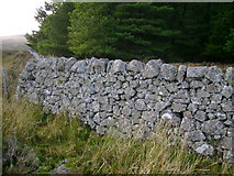 NS2869 : Stone Wall by Mark Nightingale