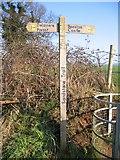 SJ5364 : Sandstone Trail Signpost by John S Turner