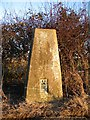 SP2881 : Triangulation pillar near Allesley by E Gammie