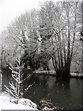 SU5766 : Snowing on the Canal: Woolhampton by Pam Brophy