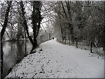SU5766 : The Wintry Towpath at Woolhampton by Pam Brophy