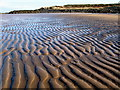 NT4884 : Black Rocks and Beach, Gullane Bay by Lisa Jarvis