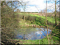 SJ6250 : Small mere, near Edleston Brook by Espresso Addict