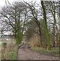 TL0036 : Byway to Millbrook Warren by Rob Farrow