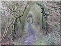 TM1095 : Footpath to Wattlefield by Ian Robertson