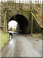 NY4175 : Underpass leading to Rowanburnfoot by Howard Mattinson