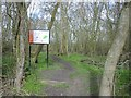 TL2982 : Wistow Wood Nature Reserve by Chris Stafford