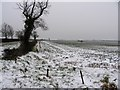 TL1079 : Fields with snow in the rain! by Andrew Tatlow