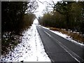 TL1277 : Road through Salome Wood by Andrew Tatlow