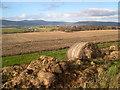 NH6562 : Black Isle farmland by Julian Paren