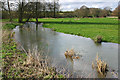 SP4522 : The River Dorn near Buswell's Thicket by Martin Loader