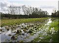 SP4522 : Floods near Tittenford Bridge by Martin Loader