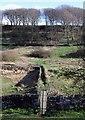 SE0733 : Doe Park Reservoir by Paul Glazzard