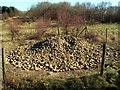 SE3211 : Wheatley Wood Old Mine Shaft by John Fielding