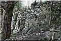 SD4878 : Wall, High Cote by Mick Garratt