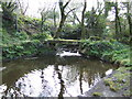 SW7022 : Footbridge at Bojorrow by Jonathan Billinger