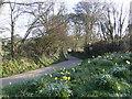 SW6922 : Skyburriowe Lane by Jonathan Billinger