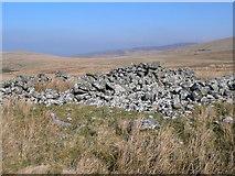 SJ0432 : Ruin near Cwm Pen Llydan by Eirian Evans