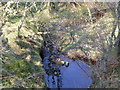 NR8388 : Burn running under the track by Alan Davidson