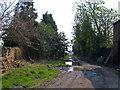 SJ6869 : Whatcroft Lane by michael ely