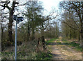 SJ6970 : Junction of Restricted Byways by michael ely