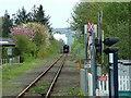 SO3573 : Bucknell railway crossing by Peter Evans