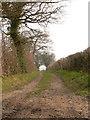 TF9517 : Nar Valley Way by Richard Mudhar
