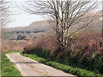 SW9055 : Lane to Burthy Farm with china clay waste tips in the background by Fred James