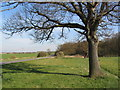TL2080 : B1090 past Monk's Wood by Tim Heaton