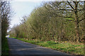 SP6531 : Road through Tingewick Wood by Martin Loader