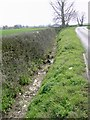 TL1237 : Hedge and ditch feature by John Yaxley