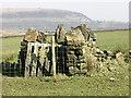 SD7415 : ? sheep enclosure by liz dawson