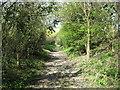 TL4240 : Public footpath in Heydon by Steve F