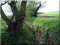 TL0864 : Stream by Les Harvey