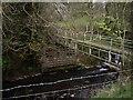 SJ9564 : Footbridge Over River Dane by Ian Bottomley