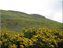 NN9407 : Hawk's Craig, Glen Eagles by wfmillar
