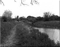 SU2462 : Wolfhall Bridge, Kennet and Avon Canal by Dr Neil Clifton
