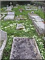 SW7532 : Graves in Mabe churchyard by Jonathan Billinger