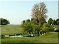 SE3005 : Silkstone Golf Course Pond by John Fielding