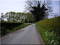 SJ6850 : View down Annions Lane by Ian Bottomley