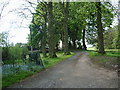 NY5759 : The Road to Farlam Ghyll by Alexander P Kapp
