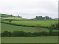 ST6663 : Farmland adjoining the A39 by Virginia Knight
