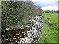SH9712 : Afon Banwy by William Metcalfe