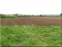 SP8316 : Ploughed field ready for planting by David Hawgood