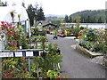 SX1161 : Duchy Of Cornwall Nurseries by Jonathan Billinger