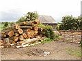 SP7925 : Wood yard by David Hawgood