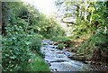 SX1191 : River Valency at Newmills by Jon Coupland